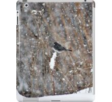 Dark-eyed Junco in the Snow Storm iPad Case/Skin