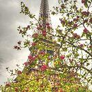 Budding Eiffel by Michael Matthews