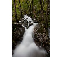 forest flow, glen nevis Photographic Print