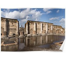 Pompeii - the Ancient Basilica Reflected Poster