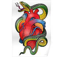 Snake and Heart color Poster