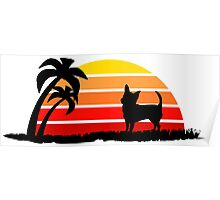 Chihuahua on Sunset Beach Poster