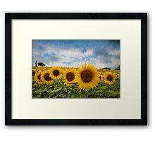 Sunflower field - Oil Impasto Impressionism Framed Print