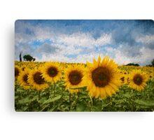 Sunflower field - Oil Impasto Impressionism Canvas Print