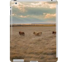 Cows Among the Grass iPad Case/Skin