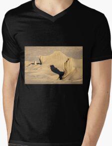 Wind Sculptures on South Padre Island Mens V-Neck T-Shirt