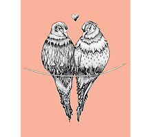Peachy Love Birds Photographic Print