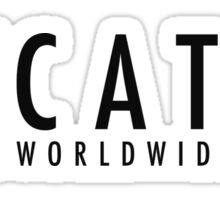 CatCo WWM Sticker