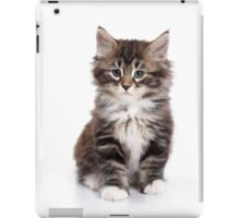 Fluffy sad kitten Siberian cat iPad Case/Skin
