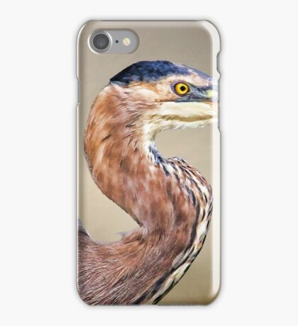 Great Blue Heron Portrait iPhone Case/Skin