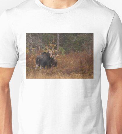 Algonquin Moose - Algonquin Park, Canada Unisex T-Shirt