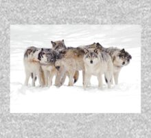 Dysfunctional Family - Timber Wolf Kids Tee