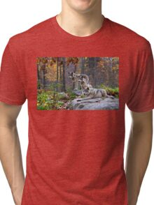 Timber Wolves Tri-blend T-Shirt