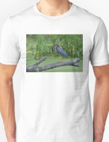 Green Heron wins local fishing contest! Unisex T-Shirt