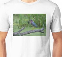 Green Heron wins local fishing contest! Unisex T-Shirt