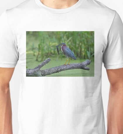 Green Heron wins local fishing contest! T-Shirt