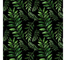 Watercolor Seamless pattern with green branches. Photographic Print