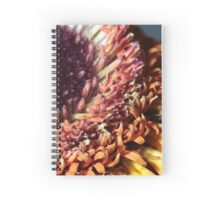gerbera stamen floral abstract background Spiral Notebook