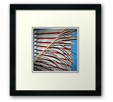 Carl's Florida Flag Framed Print