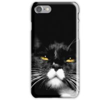 A wonderful cat, with the worst of attitudes iPhone Case/Skin