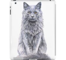 Willow iPad Case/Skin