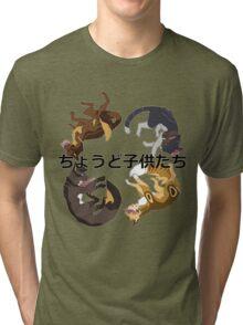 TIGERSTARS CHILDREN Tri-blend T-Shirt