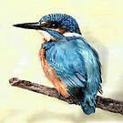 Kingfisher by L K Southward