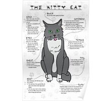 The Kitty Cat Poster