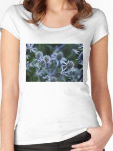 Steel Blue Women's Fitted Scoop T-Shirt