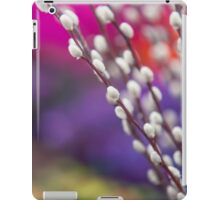 Spring Willow Branch of White Furry Catkins iPad Case/Skin