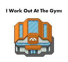 Pokemon Gym Photographic Print