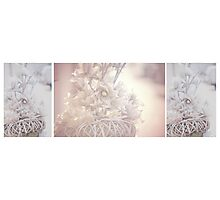 Silver Vintage Dream. Triptych Photographic Print