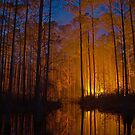 Fire In The Flatwoods by Michael L Dye