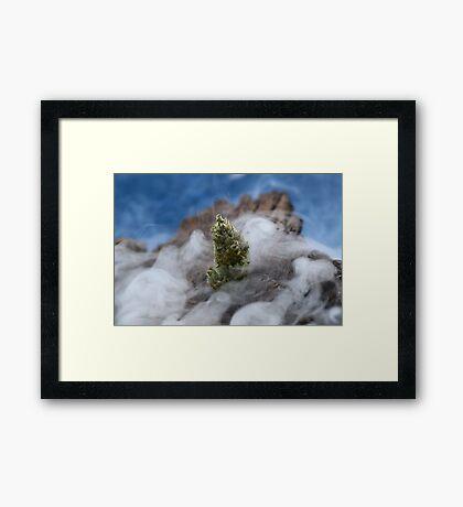 smoke star Framed Print