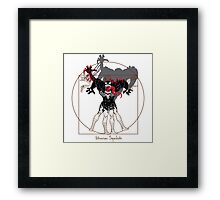 The spiders Framed Print