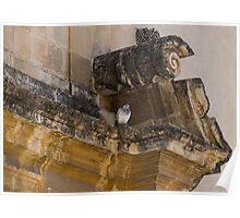 Sophisticated Baroque Bird Perch Poster