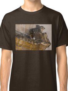 Sophisticated Baroque Bird Perch Classic T-Shirt