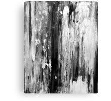 Surface 09 BK Canvas Print