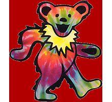 Grateful Dead Bear Photographic Print