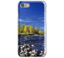 Fall Colors Along the Naches River iPhone Case/Skin