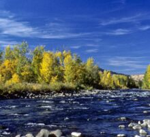 Fall Colors Along the Naches River Sticker