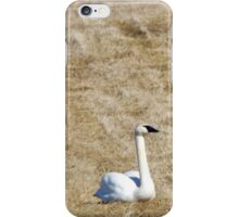 Swan Yoga iPhone Case/Skin