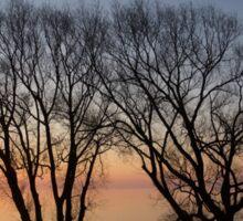 November Sunrise on Lake Ontario in Toronto, Canada  Sticker