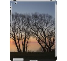 November Sunrise on Lake Ontario in Toronto, Canada  iPad Case/Skin