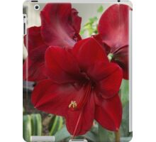 Christmas Red Amaryllis Flowers iPad Case/Skin
