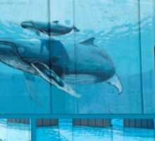 """Whaling Wall #42  """"East Coast Humpbacks"""" - Original Painting by Wyland Sticker"""