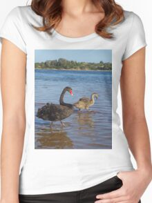 Black Swan (Cygnus atratus) Women's Fitted Scoop T-Shirt