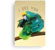I see you. Sly Parrot Photo Canvas Print