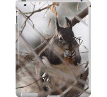 Box Elder Beast iPad Case/Skin