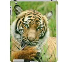Seductive Tigress iPad Case/Skin